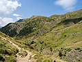 Canal Roya - WLE Spain 2015 (3).jpg