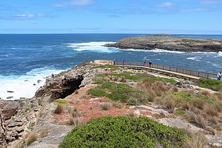 Western Kangaroo Island Marine Park (state waters) Protected area in South Australia