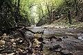 Caras river.jpg