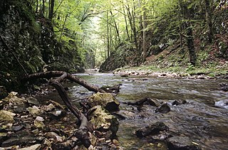 Karaš river in Serbia