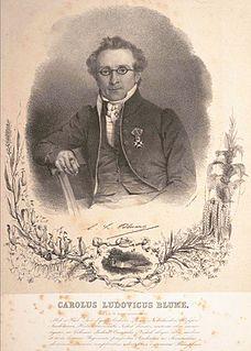 German-Dutch botanist