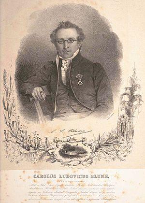 Carl Ludwig Blume - Carl Ludwig von Blume (1796-1862)