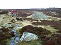 Carrock Fell - approaching the summit - geograph.org.uk - 1046727.jpg