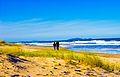 Casal na Praia de Leste.jpg