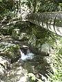 Cascate Molina Fumane giu2013 n51.jpg