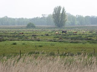 Barnby Broad and Marshes human settlement in United Kingdom