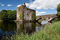 Castles of Munster, Carrigadrohid, Cork - geograph.org.uk - 1392939.jpg