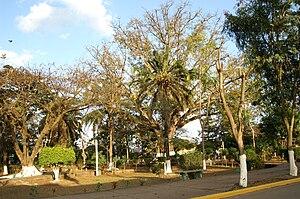 Catacamas - Image: Catacamas Parque Central