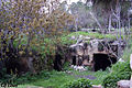 Cave Lion in jerusalem Efi elian.jpg