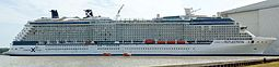 Celebrity REFLECTION.jpg