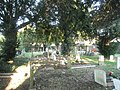 Cemetery behind St Joseph's Church - geograph.org.uk - 636729.jpg