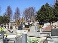 Cemetery in Straconka (5).JPG
