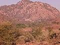 Cerro San Esteban - panoramio.jpg