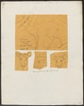 Cervus tarandus - 1700-1880 - Print - Iconographia Zoologica - Special Collections University of Amsterdam - UBA01 IZ21500073.tif