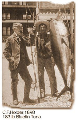 Charles Frederick Holder - Image: Charles f holder and tuna 1898