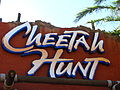 Cheetah Hunt entrance.jpg