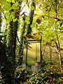 Chenstochov ------- Jewish Cemetery of Czestochowa ------- 53.JPG