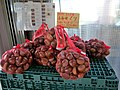 Chestnut Obuse City, Nagano Prefecture.jpg