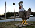 Chicken in Elkton, Tennessee.jpg