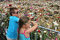 Children watching a sea of flowers.JPG