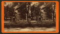 Chippewa Square, Savannah, Ga, from Robert N. Dennis collection of stereoscopic views.png