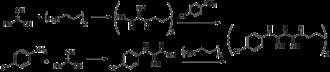 Chlorhexidine - Image: Chlorhexidine synthesis