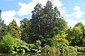 Christchurch Botanic Gardens kz16.jpg