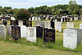 City of London Cemetery - Across cemetery 02.jpg