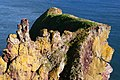 Cliff formation, north of St Abbs - geograph.org.uk - 599043.jpg