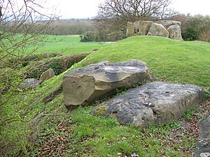 Coldrum Long Barrow - The northern kerb stones in the foreground, with the chamber in the background.