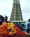 Colorful tamilnadu.jpg