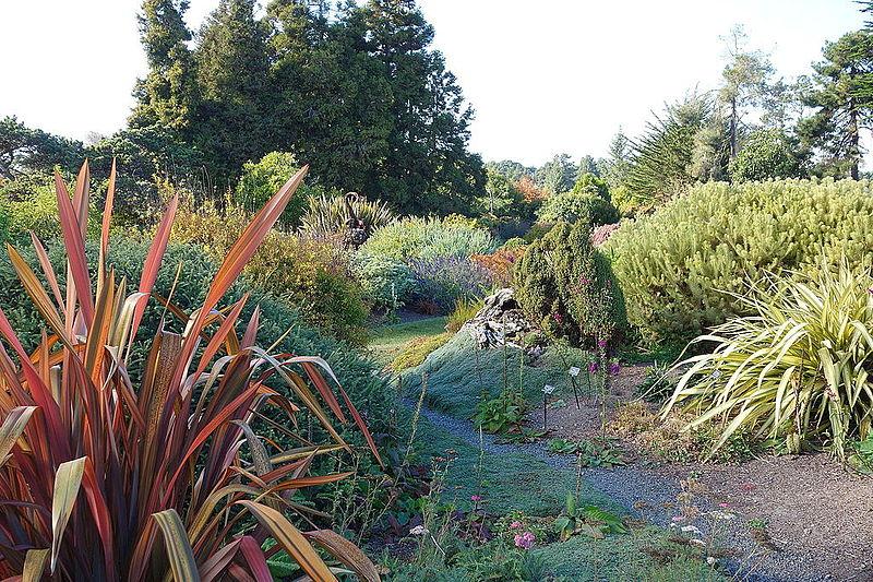 File Colors Mendocino Coast Botanical Gardens Dsc02274 Jpg Wikimedia Commons