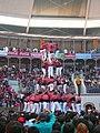 Concurs de Castells 2008 P1220452.JPG