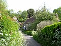Cottages in Back Lane East Coker - geograph.org.uk - 1299458.jpg