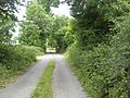 Country Road, Co Clare - geograph.org.uk - 1954766.jpg