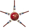 Cricket-barnstar-small.png