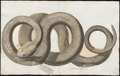 Crotalus horridus - 1700-1880 - Print - Iconographia Zoologica - Special Collections University of Amsterdam - UBA01 IZ11700009.tif