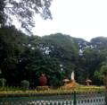 Cubbon park, banglaore , india.png