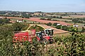 Cullompton, maize harvest - geograph.org.uk - 240736.jpg