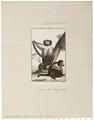 Cynocephalus hamadryas - 1798-1803 - Print - Iconographia Zoologica - Special Collections University of Amsterdam - UBA01 IZ20100019.tif