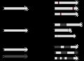 DE Mutations.png