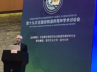 Daniel Gianola - Daniel Gianola delivering a conference in  Nanjing, China, 2017