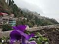 Darjeelingview.jpg