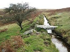 Dartmoor, Holne Moor Leat - geograph.org.uk - 1014480.jpg