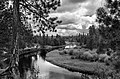 Deschutes River (11147885424).jpg