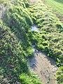 Deutergraben Graben mit dem Schäferborn.jpg
