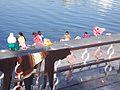 Dhobis in Udaipur (4180247688).jpg