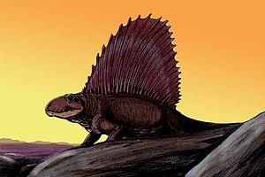 Paleontology in Texas - Dimetrodon.