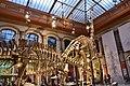 Dinosaur Hall, Berlin Natural History Museum (2) (28403426779).jpg