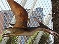 Dinosaurios a l´humbracle - panoramio.jpg